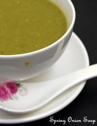 Spring Onion Soup
