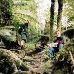 Wellington - Smith Creek Shelter track
