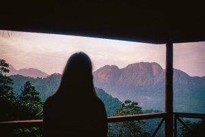 The Tree House - Sri Lanka