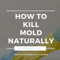 How To Kill Mold Naturally