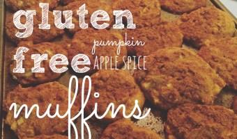 Gluten Free Pumpkin Apple Spice Muffins