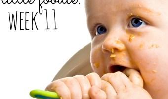 Mommy's Little Foodie: Week 11 + Apple Banana Prune Puree