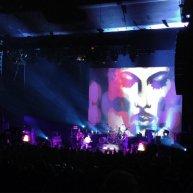 prince-blule-backdrop-toronto