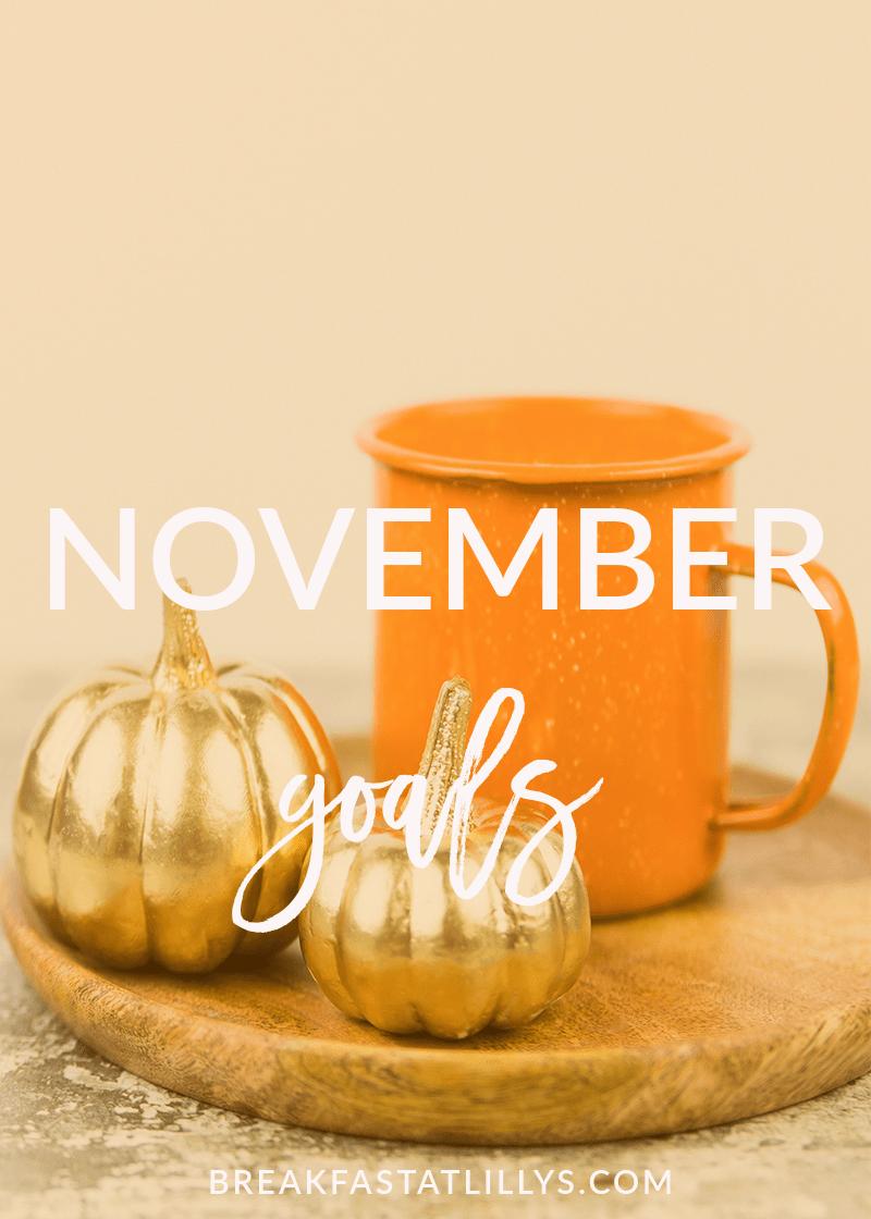 November Goals 2017