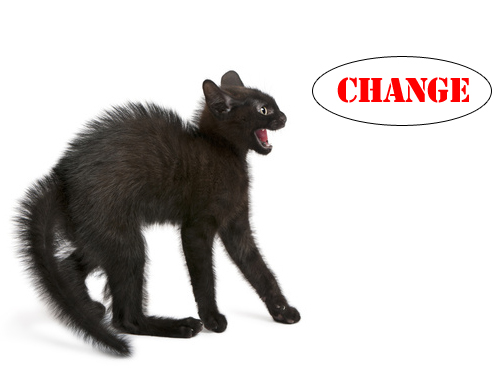 Top 6 Reasons Your Team Resists Change