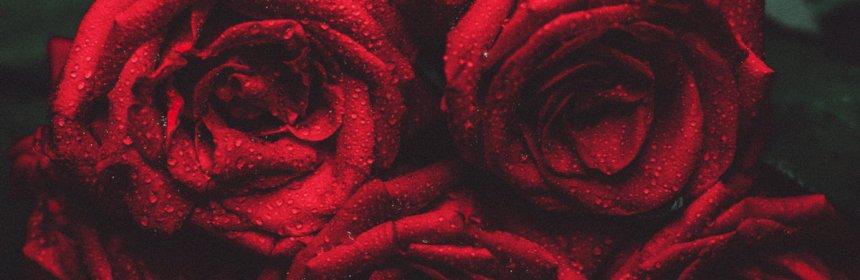 """Cover artwork for Jaecar - """"Real Love"""""""