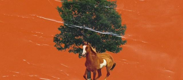 "Cover artwork for Darren Jones - ""The End of Autumn"""