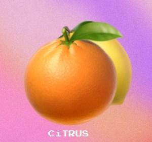 "Cover artwork for Lavi$h Liam - ""Citrus"""