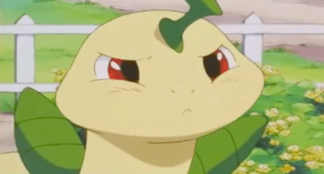Pokemon Anime Bayleef frown