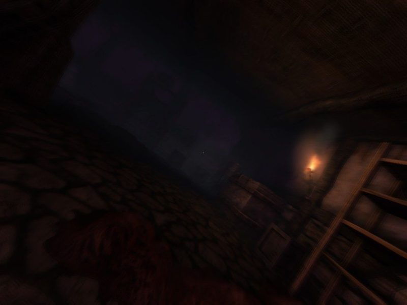 Amnesia: The Dark Descent low sanity