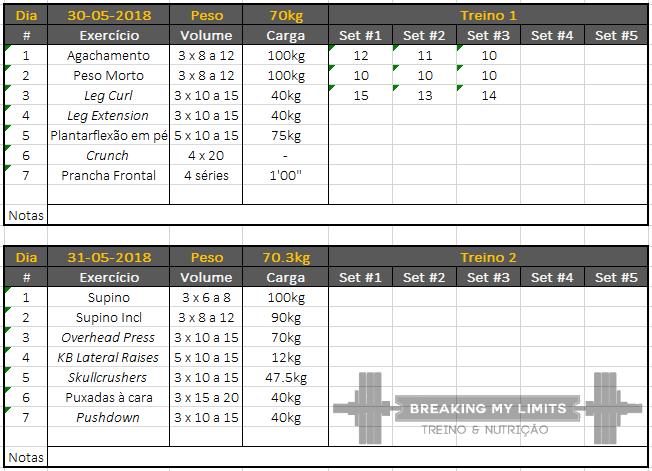 Exemplo de uma spreadsheet para registar o treino