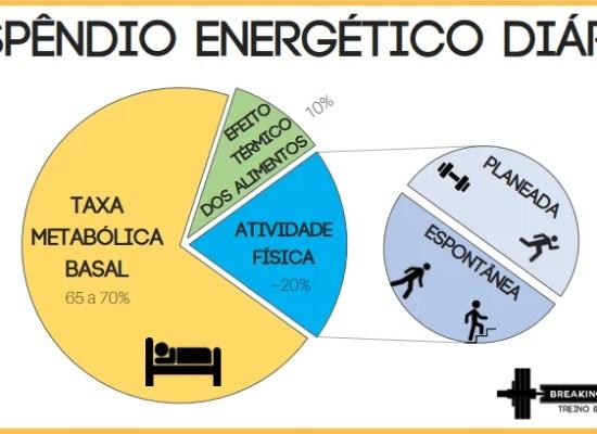 O dispêndio energético diário traduz o gasto de calorias por dia.