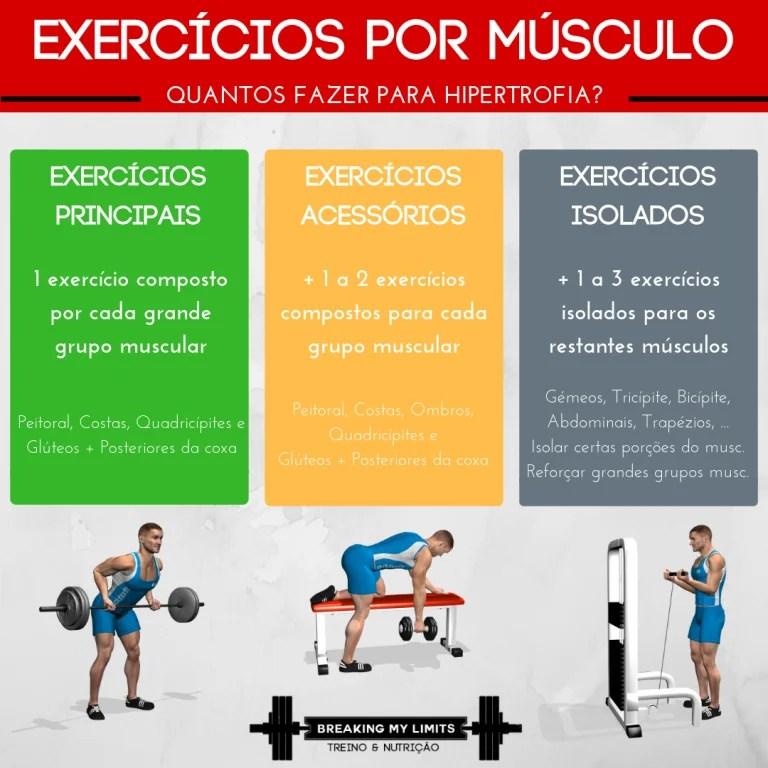 Para hipertrofia, manter 1 exercício principal para cada grande grupo muscular, acompanhado de 1-2 compostos acessórios e 1-3 exercícios isolados é ótimo para potenciar os resultados! E, claro, manter uma variedade de exercícios adequada para estimular o músculo de formas diferentes!