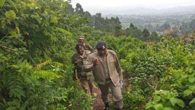 Photo of One Killed in Tribal Clashes on Nandi-Kakamega Border