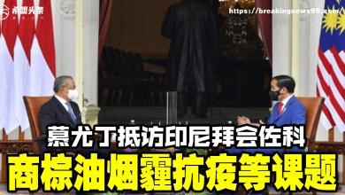 Photo of 慕尤丁抵访印尼拜会佐科 商棕油烟霾抗疫等课题