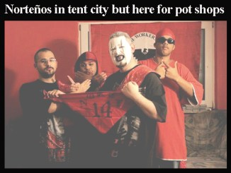 Norteños in Victoria for pot