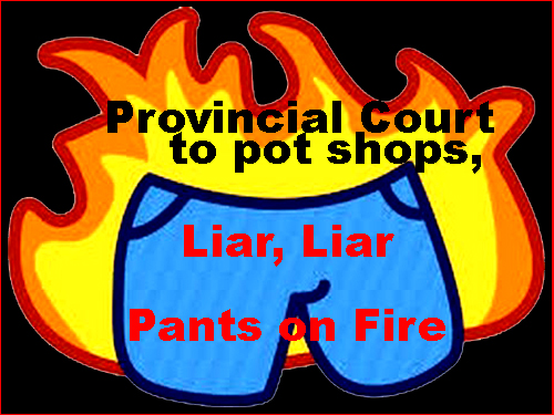 Pot Shop Lie - Liar, Liar, Pants on Fire