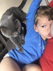 Toddler having milk and cat sitting on toddler. Nursing boundaries