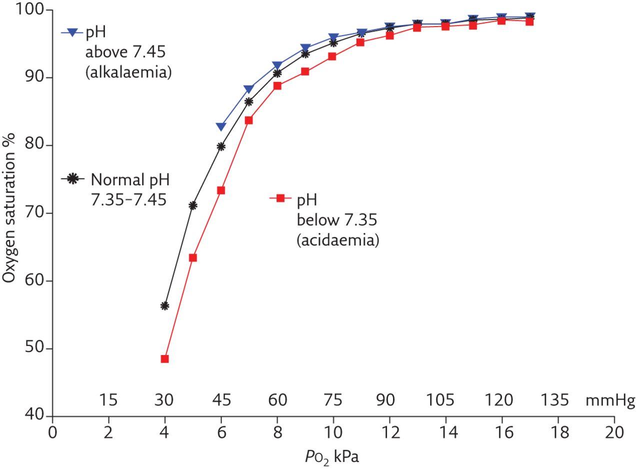 Dissolved Oxygen Equation