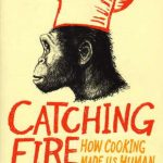 Cover of Catching Fire: How Cooking Made Us Human by Richard Wrangham