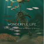 Cover of Wonderful Life by Stephen Jay Gould