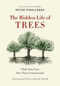 Cover of The Hidden Life of Trees