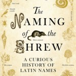 Cover of The Naming of the Shrew by John Wright
