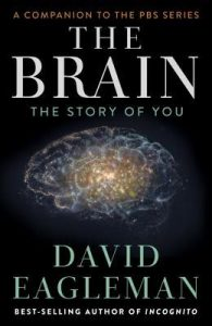 Cover of The Brain by David Eagleman