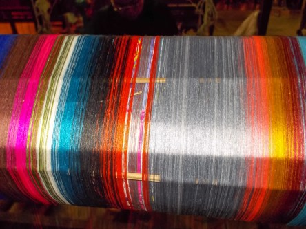 The warp threads on a silk loom