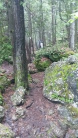 On the Bruce Trail
