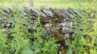stone walls in the Lake District