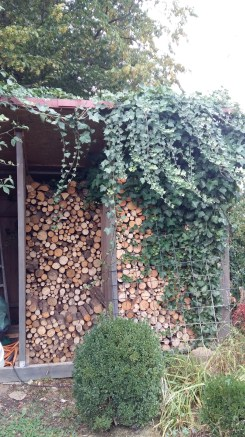 The wood pile, ready for winter.