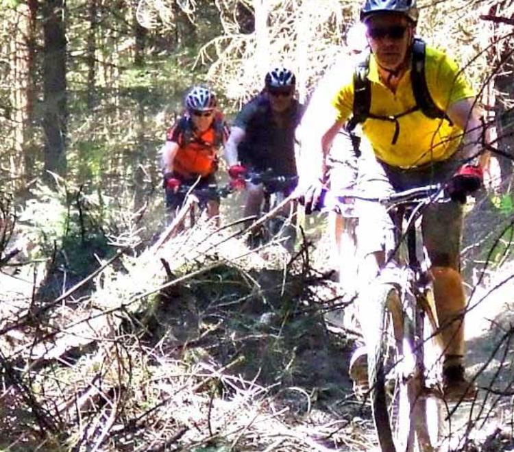 brechfa-mountain-biking-ci-item-widget