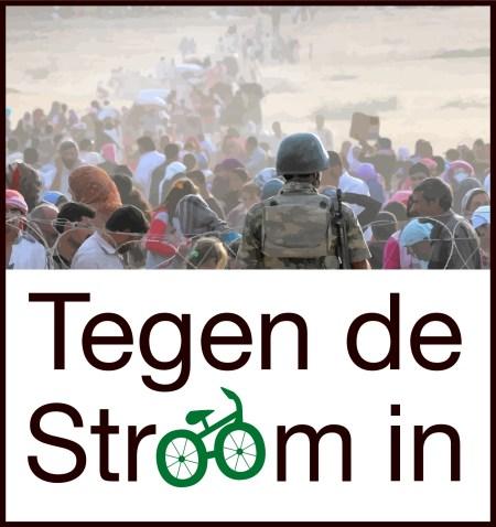 logo TDSI