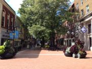 The Mall downtown Charlottesville. Just great Tons of restaurants, beautiful.