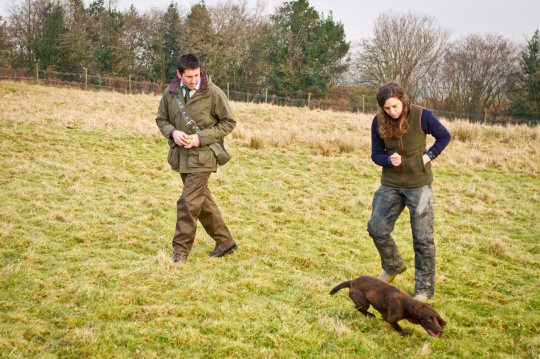 Breckmarsh-Gundogs-Jan-17-4111training