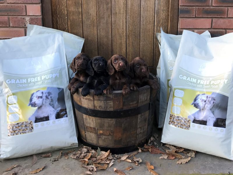 Dog and Field Hypoallergenic Premium Puppy Food