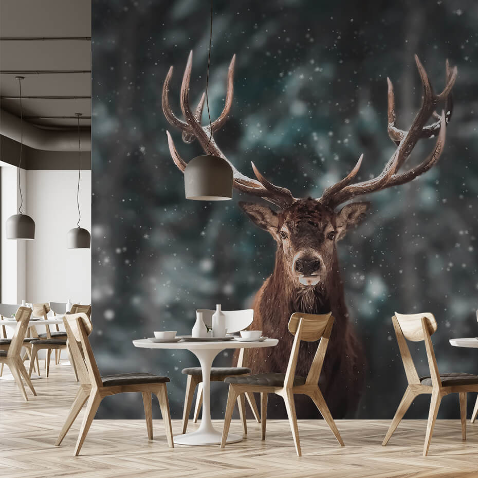 Brectus Photo wallpaper for eateries 4
