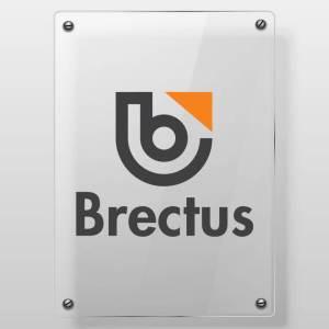Brectus Vinyl on plexiglass
