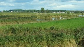 c-amsterdam-thriugh-the-polders