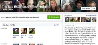 A Facebook Group reviewing bad French Bulldog breeders.