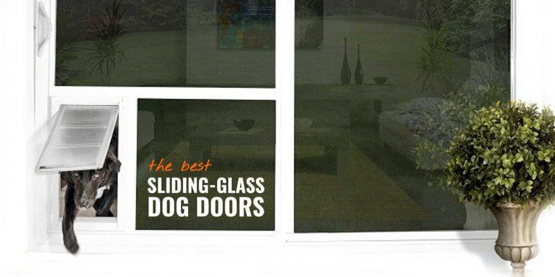 7 best sliding glass dog doors