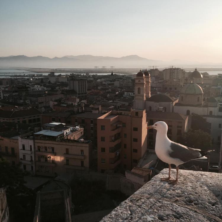 Mon voyage en Sardaigne entre copines 15