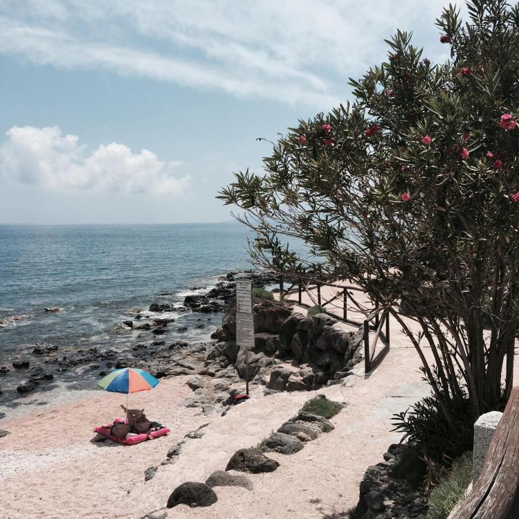 Mon voyage en Sardaigne entre copines 53