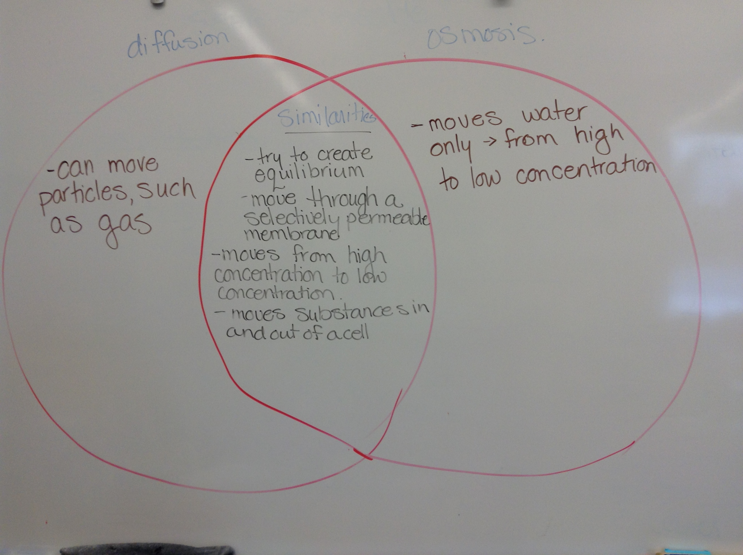 34 Osmosis And Diffusion Venn Diagram