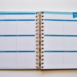 BlueSky & Day Designer Planner Review
