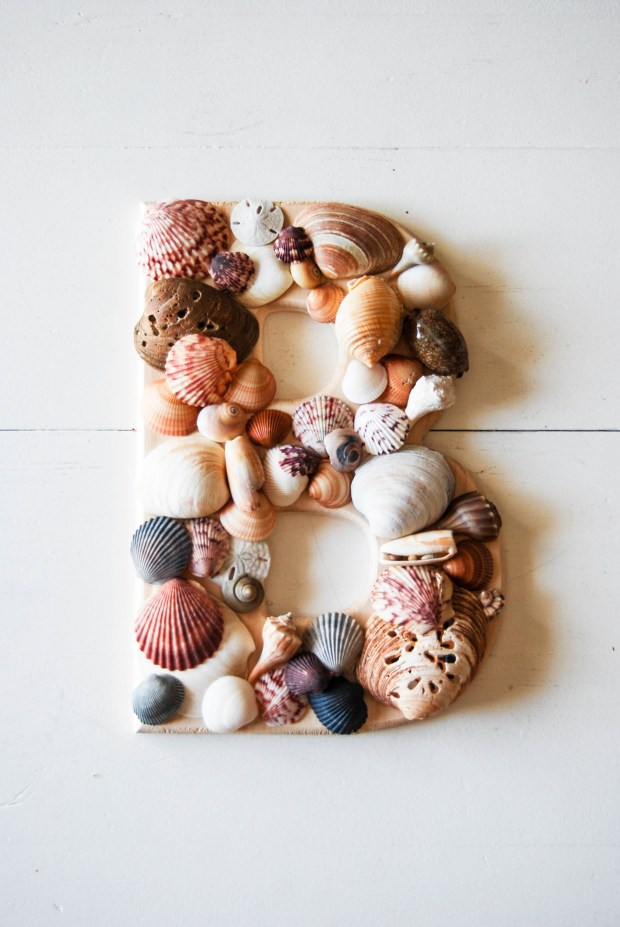 DIY Friday- SeaShell Letter | Breezing Through 2