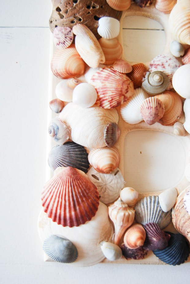 DIY Friday- SeaShell Letter | Breezing Through 7