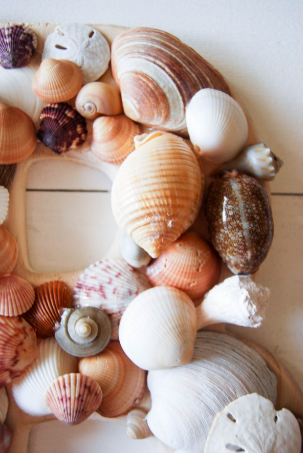 DIY Friday- SeaShell Letter | Breezing Through 9