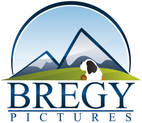 Bregy Pictures